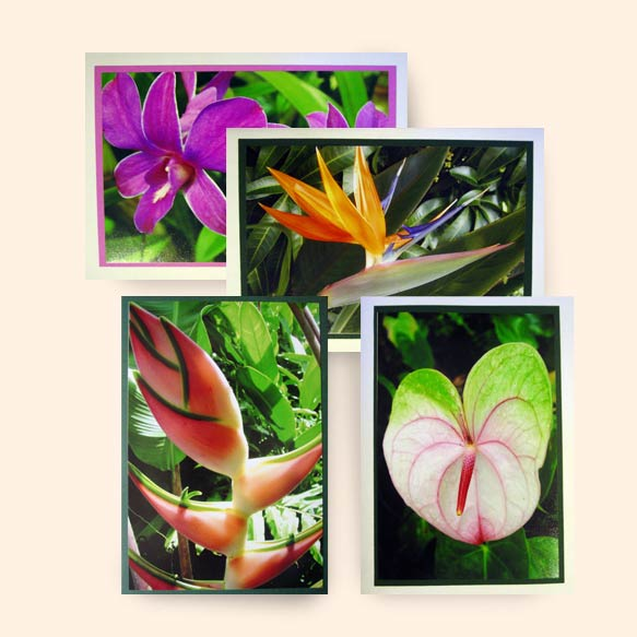 Custom gift card make your gift more special with a beautiful photo custom gift card colourmoves