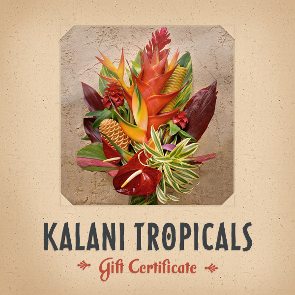 Gift certificates send your aloha with a personal kalani tropicals gift certificates mightylinksfo