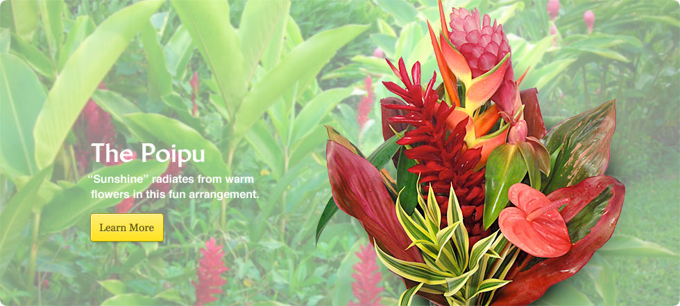 Order Tropical Flowers Direct from Kauai, Hawaii | Kalani Tropicals