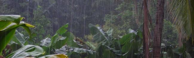 Rains wreak havoc on island: It's a deluge!