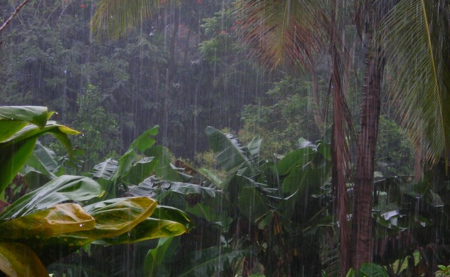 Rains wreak havoc on island: It's a deluge!