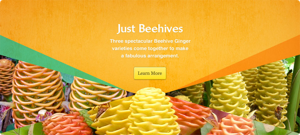Just Beehives
