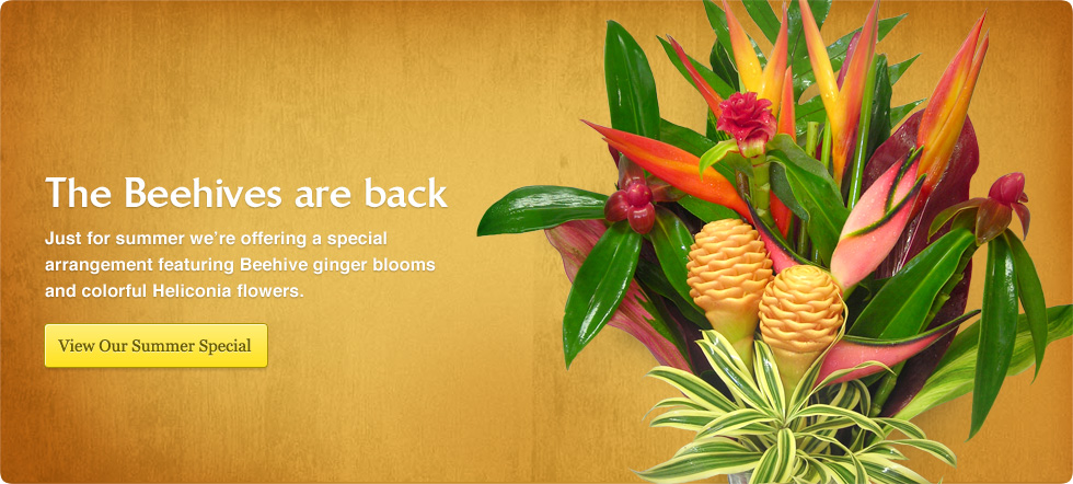 Order Tropical Flowers Beehive Ginger Special